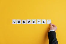 Businessman Making A Goodbye S...