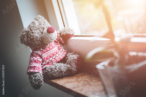Fototapeta  Leaving concept: Teddy bear is looking out of the window, sunlight