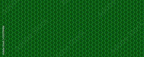 Fototapeta green skin texture background obraz