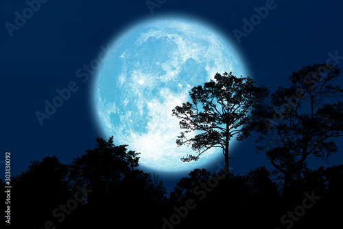 Photo Full Buck Moon back silhouette trees in field