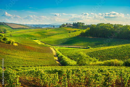 Chianti vineyards and panorama at sunset. Vinci, Tuscany, Italy Canvas