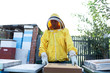 Professional beekeeper working outdoors and wearing the protective suits used for beekeeping. Beekeeper harvesting honey from a bee hive.