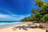 Tropical Sunny beach and coconut palms on Seychelles. Summer vacation and tropical beach concept.