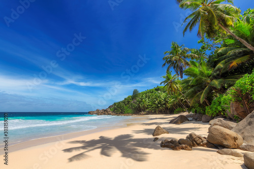 Foto auf Leinwand Palms Tropical Sunny beach and coconut palms on Seychelles. Summer vacation and tropical beach concept.