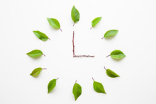 Clock Created From Fresh Green...