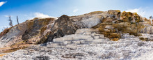 Mammoth Hot Springs In Yellows...