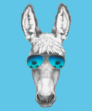 Portrait Of Donkey With Sunglasses. Hand-drawn Illustration. Vector Isolated Elements.