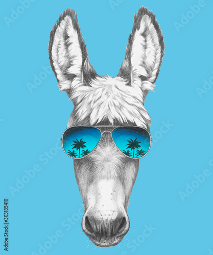 Leinwand Poster Portrait of Donkey with sunglasses