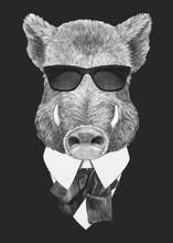 Portrait Of Boar In Suit. Hand...