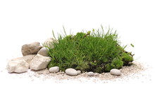 Green Grass And Moss With Sand...