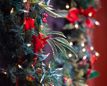 Festive Christmas Backdrop With Light And Green Garland And Red Flowers