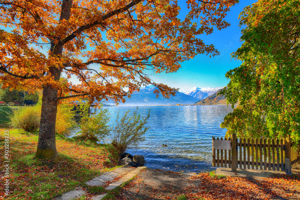 Fototapety, obrazy: Spectacular autumn view of lake and trees in city park of Sell Am See