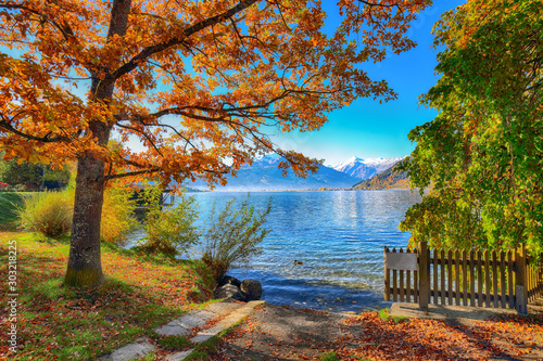 Fototapeta jesień   spectacular-autumn-view-of-lake-and-trees-in-city-park-of-sell-am-see