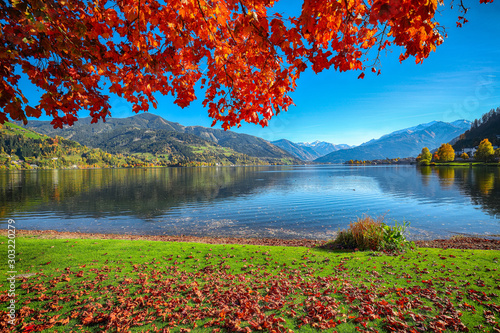 Foto auf AluDibond Violett rot Spectacular autumn view of lake and trees in city park of Sell Am See