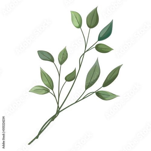 Fototapeta Wedding invitation with leaves eucalyptus, watercolor, isolated on white. Vector Watercolour. obraz na płótnie