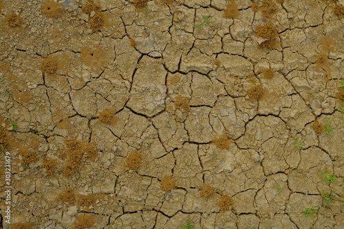 Background of a cracked arid ground with anthills Fototapete