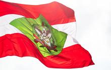 Bandeira De Santa Catarina, Br...