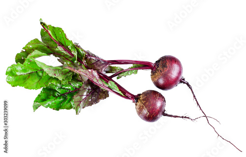 Obraz na plátně  Fresh red beet or beetroot isolated on a white background.