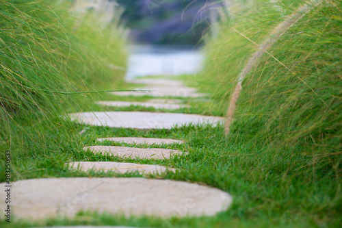 Stone walkway on green grass Wallpaper Mural