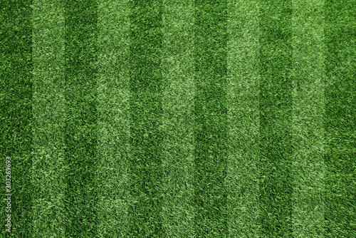 サッカーのグラウンド、芝、芝目 Canvas Print