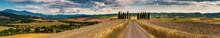 Beautiful Tuscany Landscape Pa...