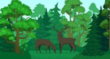 Cartoon Deer In Forest Landsca...
