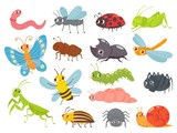Fototapeta Fototapety na ścianę do pokoju dziecięcego - Cute cartoon insects. Funny caterpillar and butterfly, children bugs, mosquito and spider. Green grasshopper, ant and ladybug. Bug insect colorful isolated vector illustration icons set