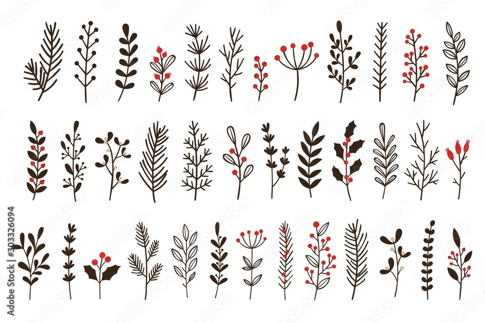 Fototapety, obrazy: Hand drawn winter leaves and branches. Floral twig, botanical branch with berry and leaf doodle. Plant leaf feather and fir tree branches christmas holiday element. Isolated vector icons set
