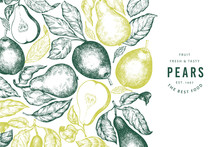 Pear Design Template. Hand Dra...