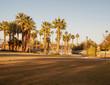 Lorenzi Park, Las Vegas, NV.