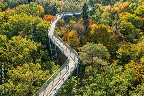 Cuadros en Lienzo A beautiful view of the treetop path, located in Beelitz, a small city near Berlin in Brandemburg, Germany