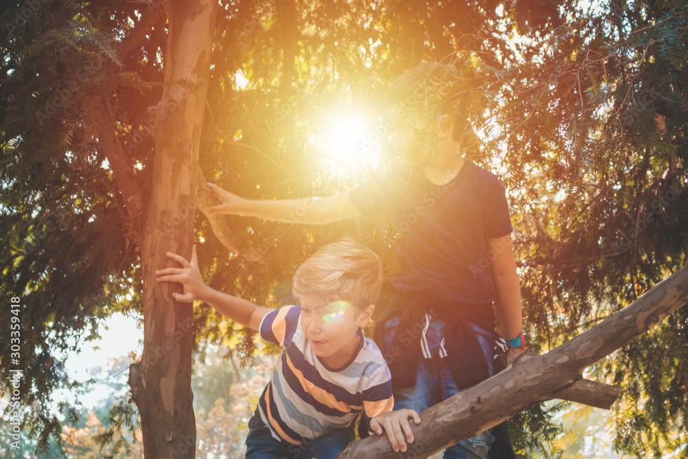 Fototapety, obrazy: Little boys climbing on a tree in nature.