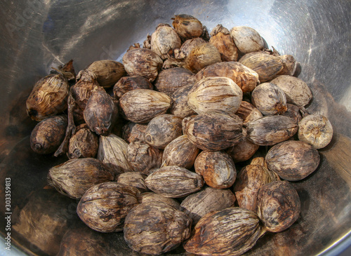 Dry betel nut into the background Canvas Print