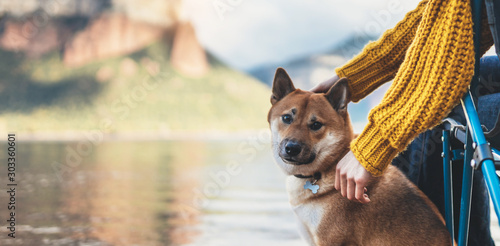 fototapeta na drzwi i meble tourist friend girl together tender dog, female hands hugging puppy pet on lake shore nature trip, friendship love concept