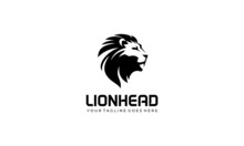 Lion Logo Vector White Backgro...