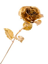 Golden Metal Rose Isolated On White Background