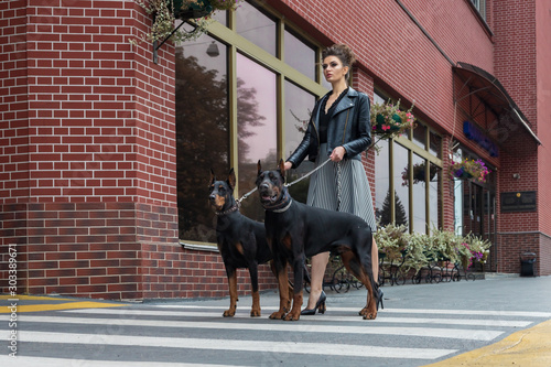 Cuadros en Lienzo A girl walks along the street in the city along the building with two Dobermans on a leash