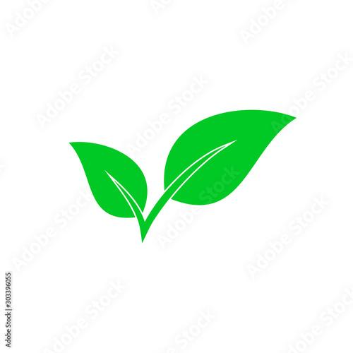 Fototapeta Vector Leaves icon isolated. Green Eco icon obraz na płótnie