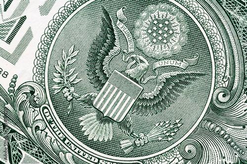 Fototapeta Eagle macro close-up on a US 1 dollar banknote. Detail of one dollar bill obraz