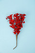 canvas print picture - Christmas decoration with red berries on blue background, vertical
