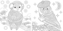 Coloring Pages Set With Two Owls