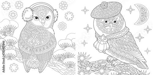 Coloring Pages Set With Two Owls Buy This Stock Vector And Explore Similar Vectors At Adobe Stock Adobe Stock