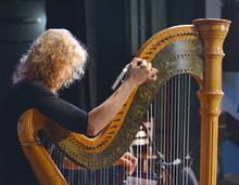 The Musician Tweaks The Harp. ...