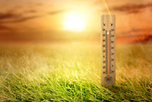Thermometer With High Temperature On The Meadow With Glowing Sun Background