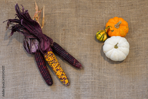 Valokuvatapetti Colorful purple Indian corn and mini pumpkings and gourds on burlap- fall decora