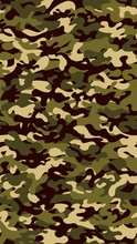 Vertical Camouflage Background...