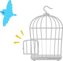 鳥かごから飛び去る青...