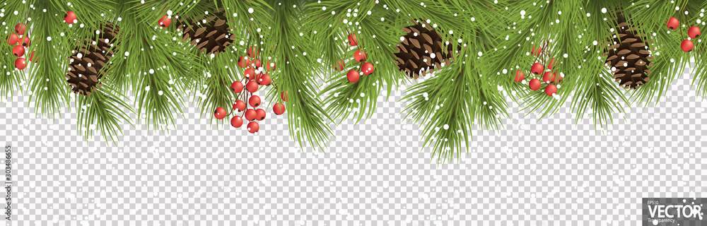 Fototapeta seamless christmas banner concept with fir branches and cones