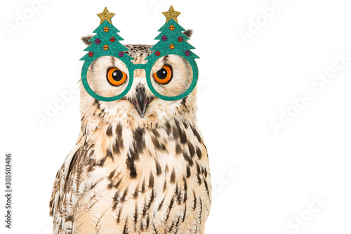 Portrait of an eagle owl with chrismas tree glasses on a white background Wallpaper Mural