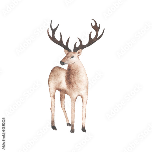 Fotobehang Hert Watercolor cute deer illustration